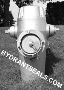 Products Hydrantseals